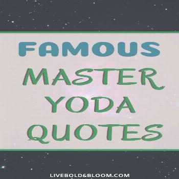 32 Famous Master Yoda Quotes Everyone needs a guide sometimes to help them make better choices. Som